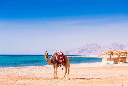 Hurghada4.jpg