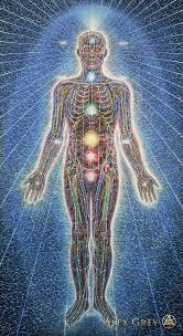 Visit  Alex Grey's  website to see the rest of his extraordinary visionary artwork depicting the various levels of the human form in his Sacred Mirrors series. And by all means, buy a print and put it on your wall!