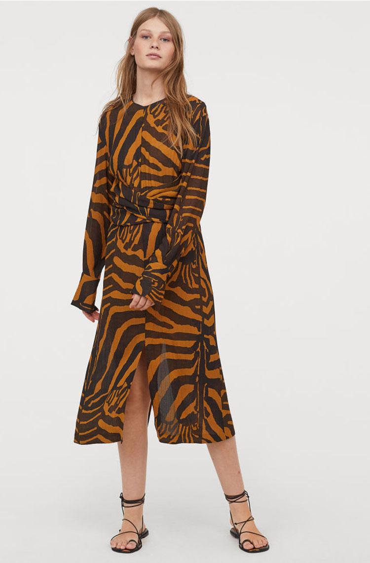 H&M Zebra Print Dress  $129