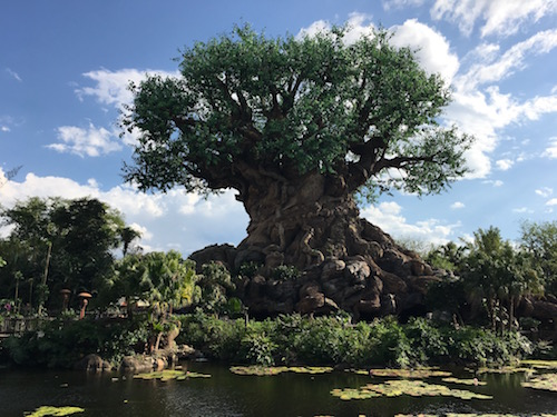 The stunning Tree of Life in The Animal Kingdom