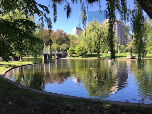 Boston's Public Garden. More swooning!