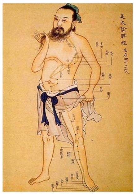 Old School Spleen acupuncture chart.jpg
