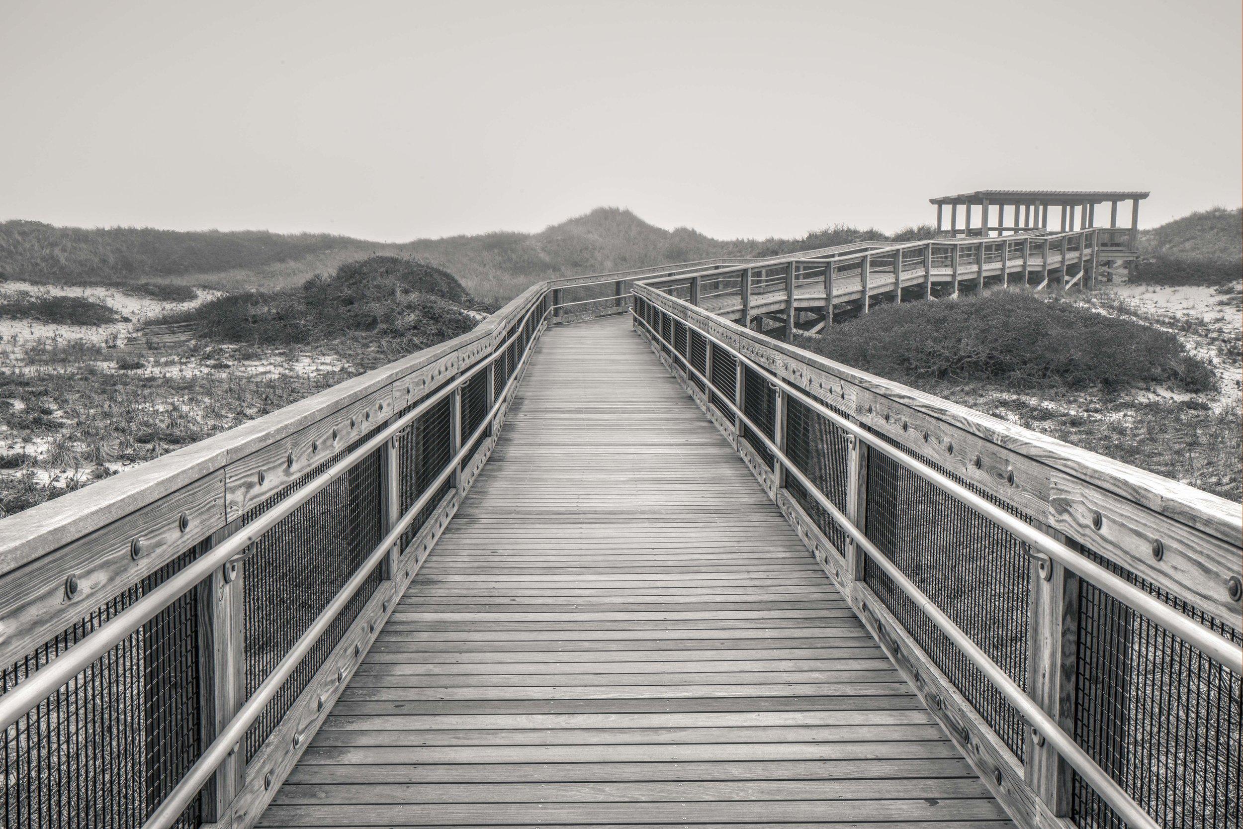 horseneckboardwalk.jpg