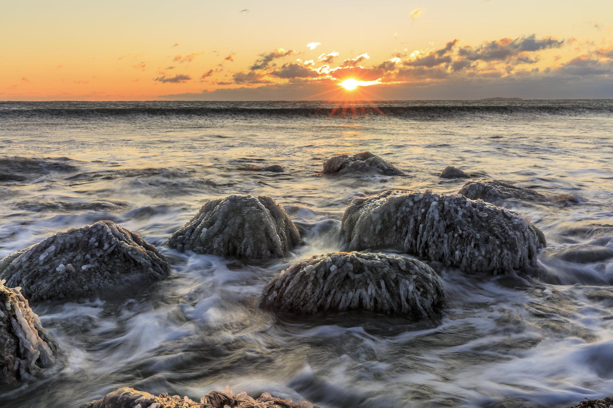 Frozen Shoreline - Westport, MA