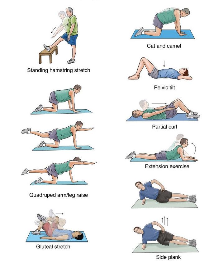 healthbackexercises.jpg