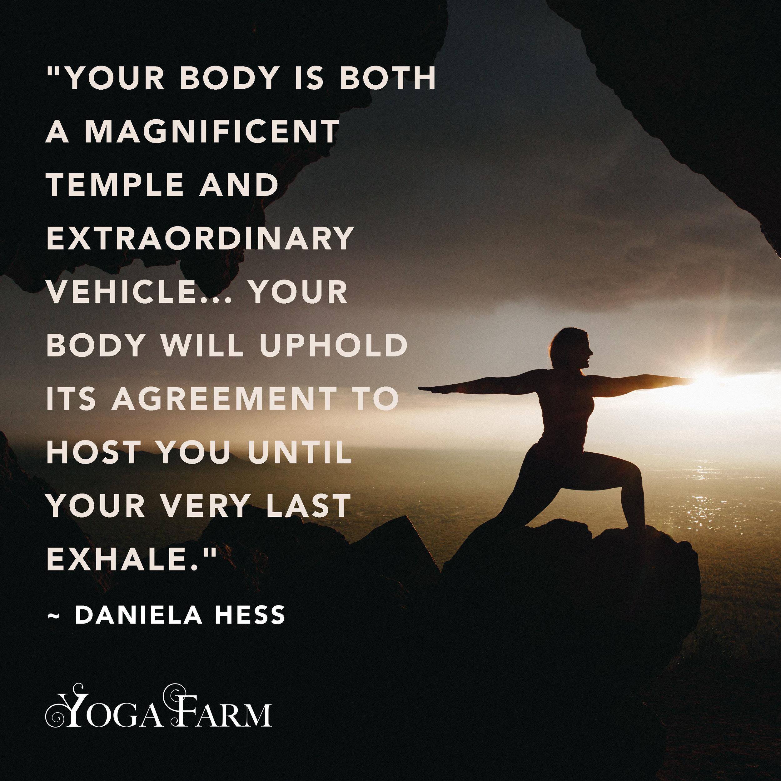yogameme_22.jpg
