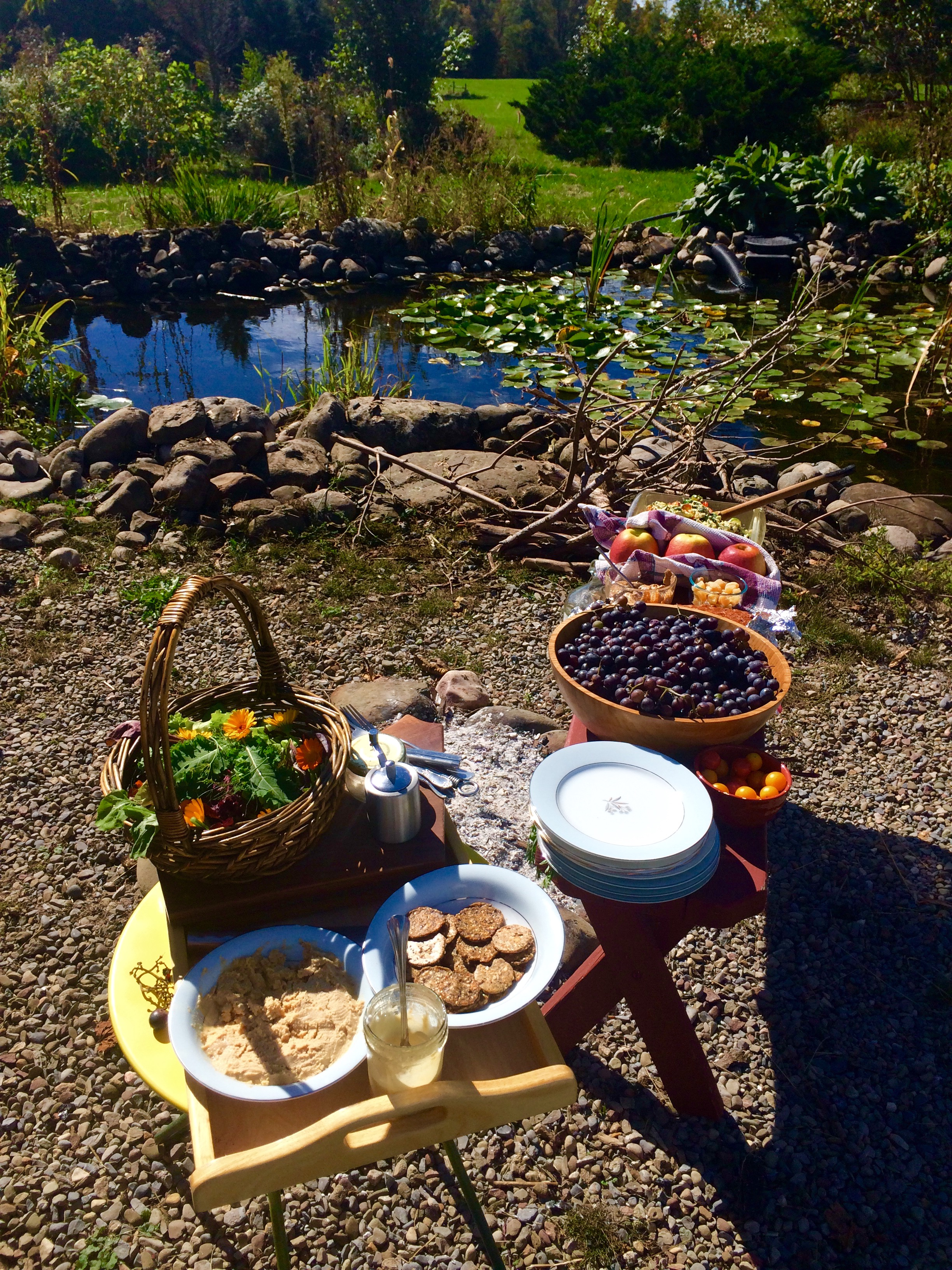 Awesome potluck and pond.jpg