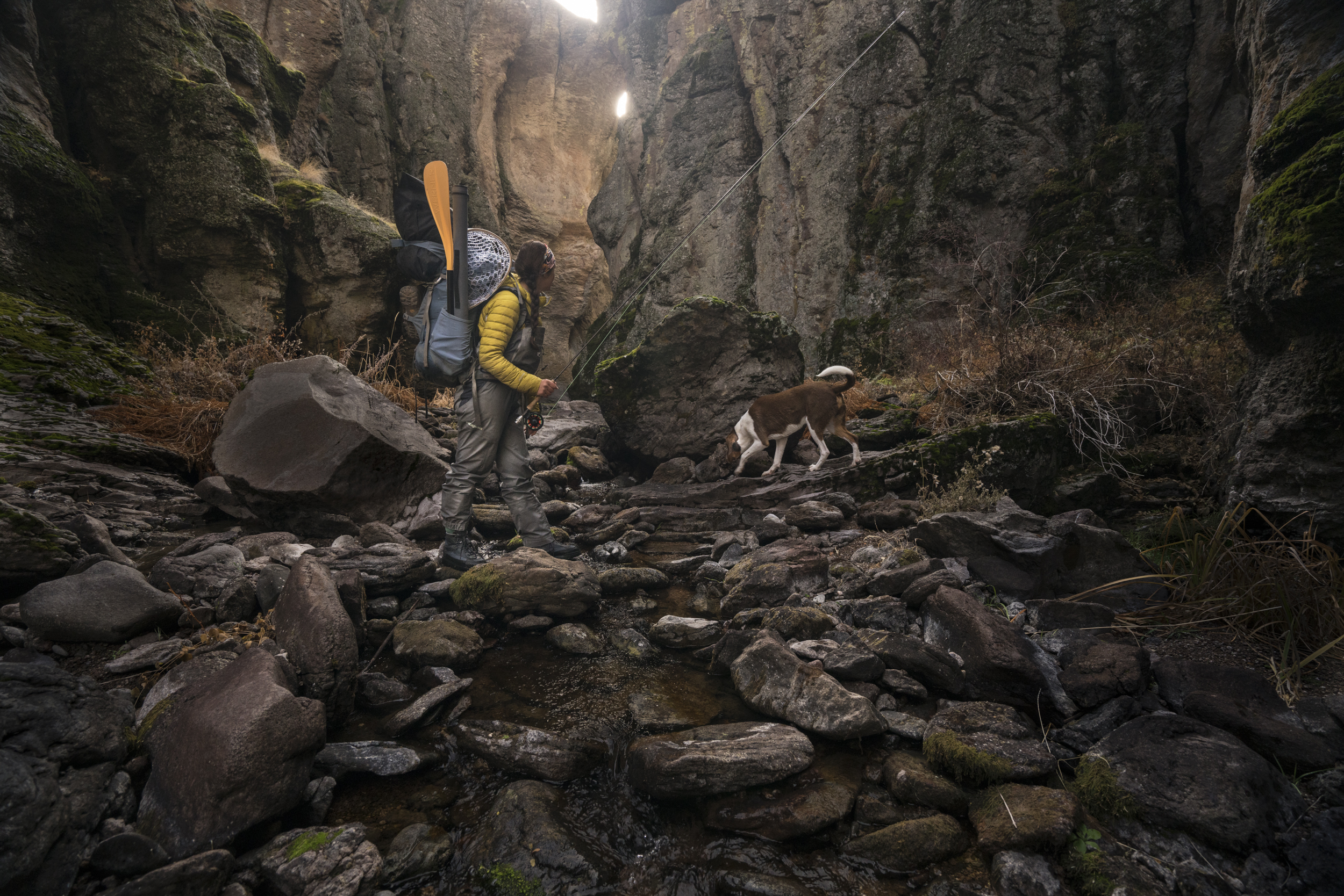 Descending into the underworld of Oregon's Owyhee Canyonlands, a hiker and her nimble hound navigate a labyrinth of steep walls and hoodoo spires in search of native redband trout.  Middle Fork Owyhee River, Oregon