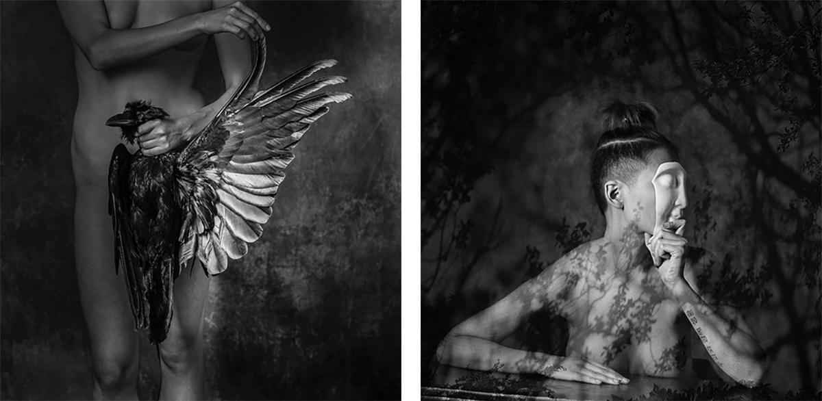 bird-and-mask-photo-tone-s-beckman.jpg