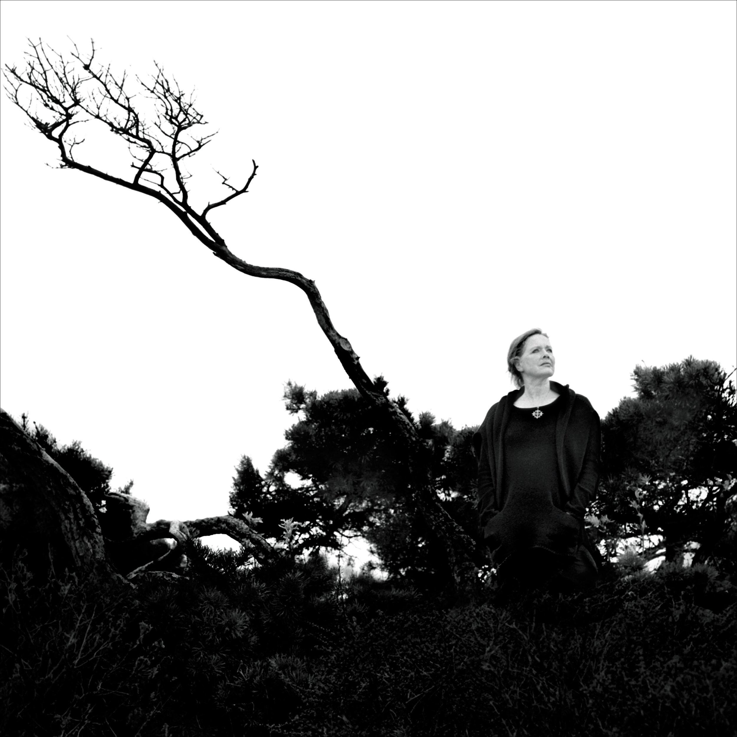 Liv Ullmann, regissør og skuespiller . Foto: Morten Krogvold, 2003