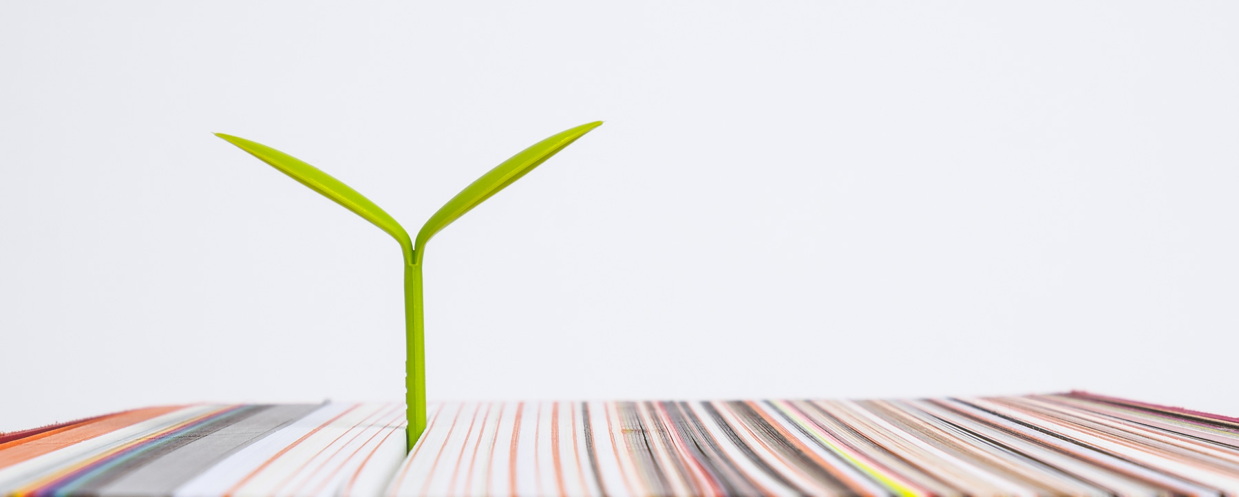 The Environment - We're passionate about our planet and 100% committed to ensuring that our services are environmentally friendly. To this end we are extremely proud to be certified with ISO 14001 and the Forest Stewardship Council (FSC®). All our paper is sourced from FSC®-certified mills and sustainable sources, and our litho presses use B2 and B3 chemistry-free plates, which have a longer lifespan than traditional, chemically processed plates. Even our litho inks are certified vegan-friendly! And where possible, we use sustainable materials for packaging including wooden pallets and plastic wraps, and we recycle everything.
