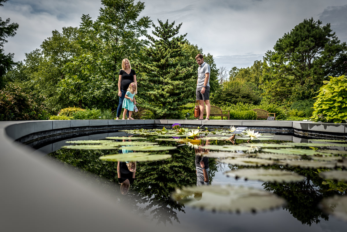 family looks at lily pads at the gorgeous gardens of MOBOT.