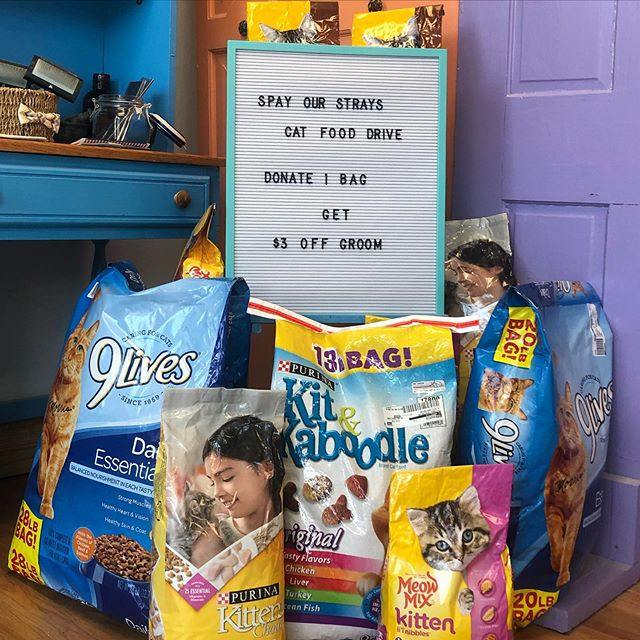 A HUGE thank you to everyone who participated in our food drive at @earthdogspa! You and your community members helped us collect 135 pounds of dry cat food for the feline friends of Lexington! 👏🏻 Not only do we have a wonderful low-cost trap-neuter-return program for community cats but we also provide food assistance to those caregivers that need it most. This donation will make a big difference in many caregivers lives 🐈 . Thank you again to the amazing groomers of Earth Dog Spa & Apawthecary for hosting this event for SOS 💜 . Keep an eye out for other ways you can help the community cats in your neighborhoods 👀 . . #adoptlove #adoptdontshop #kentucky #lexingtonkentucky #catsofinstagram #catstagram #kittensofinstagram #tnr #tnrworks #soscats #purr #meow #catlover #crazycatlady #communitycats #kittens #spayandneuter #sharethelex #earthdogspa #petgroomingwithapurpose