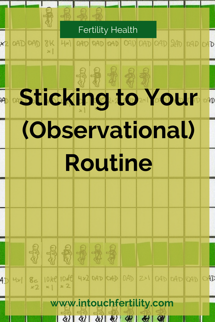 observationalroutine.png