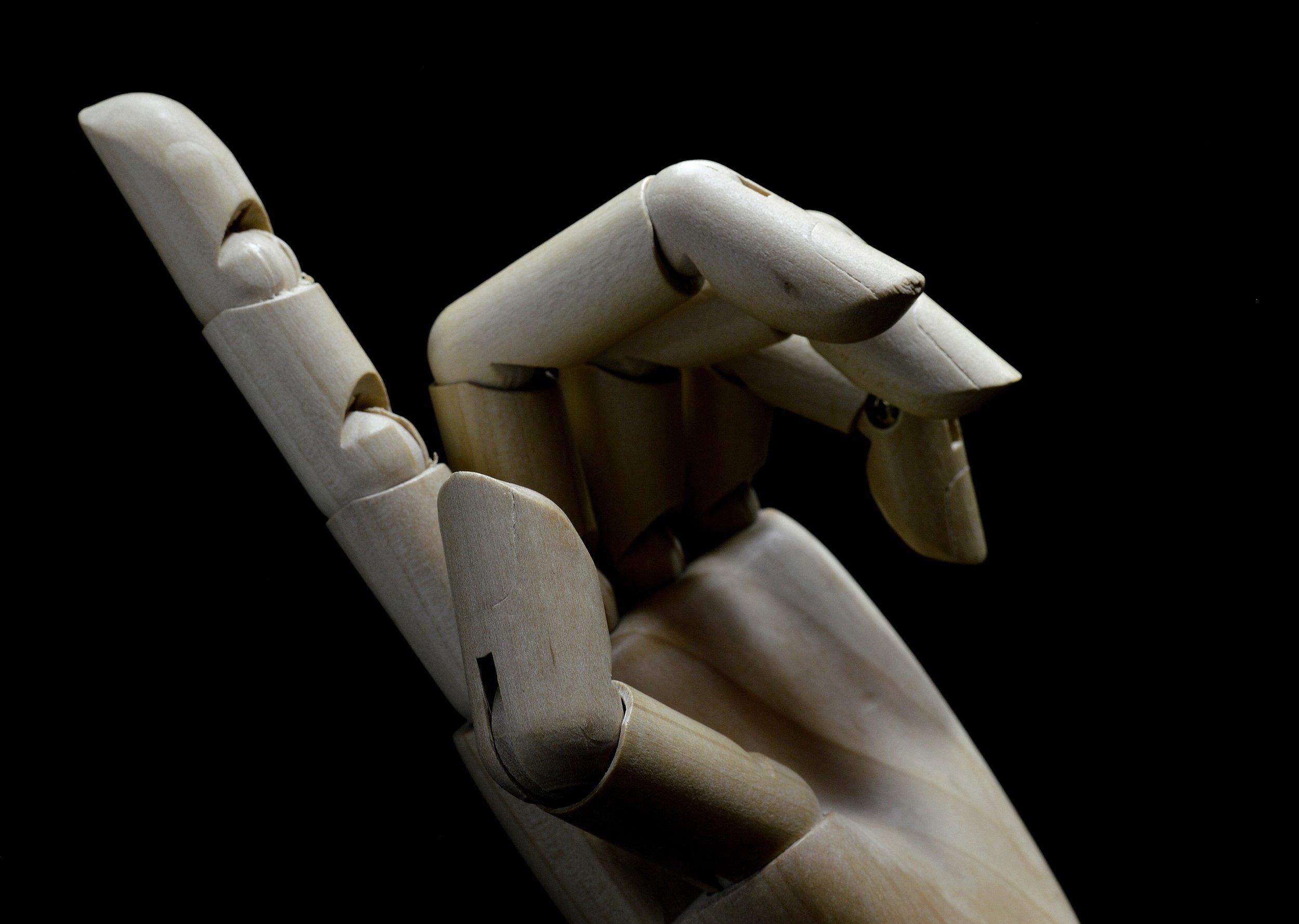 MANNEQUIN HAND.JPG
