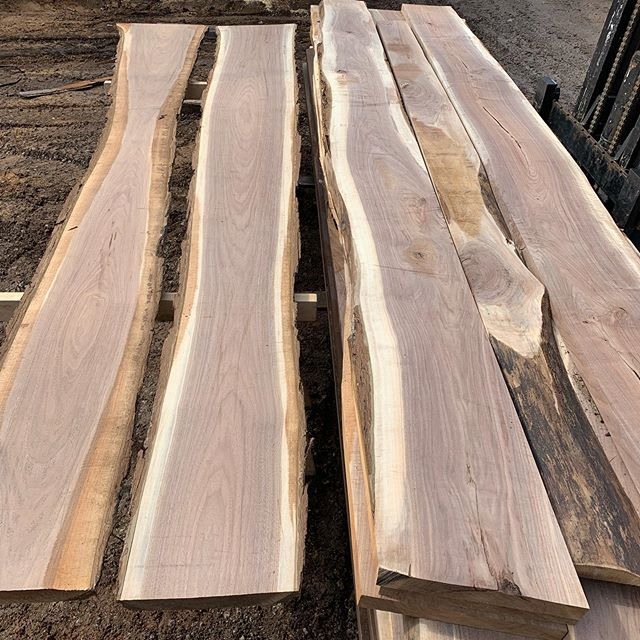 8/4 Walnut slabs