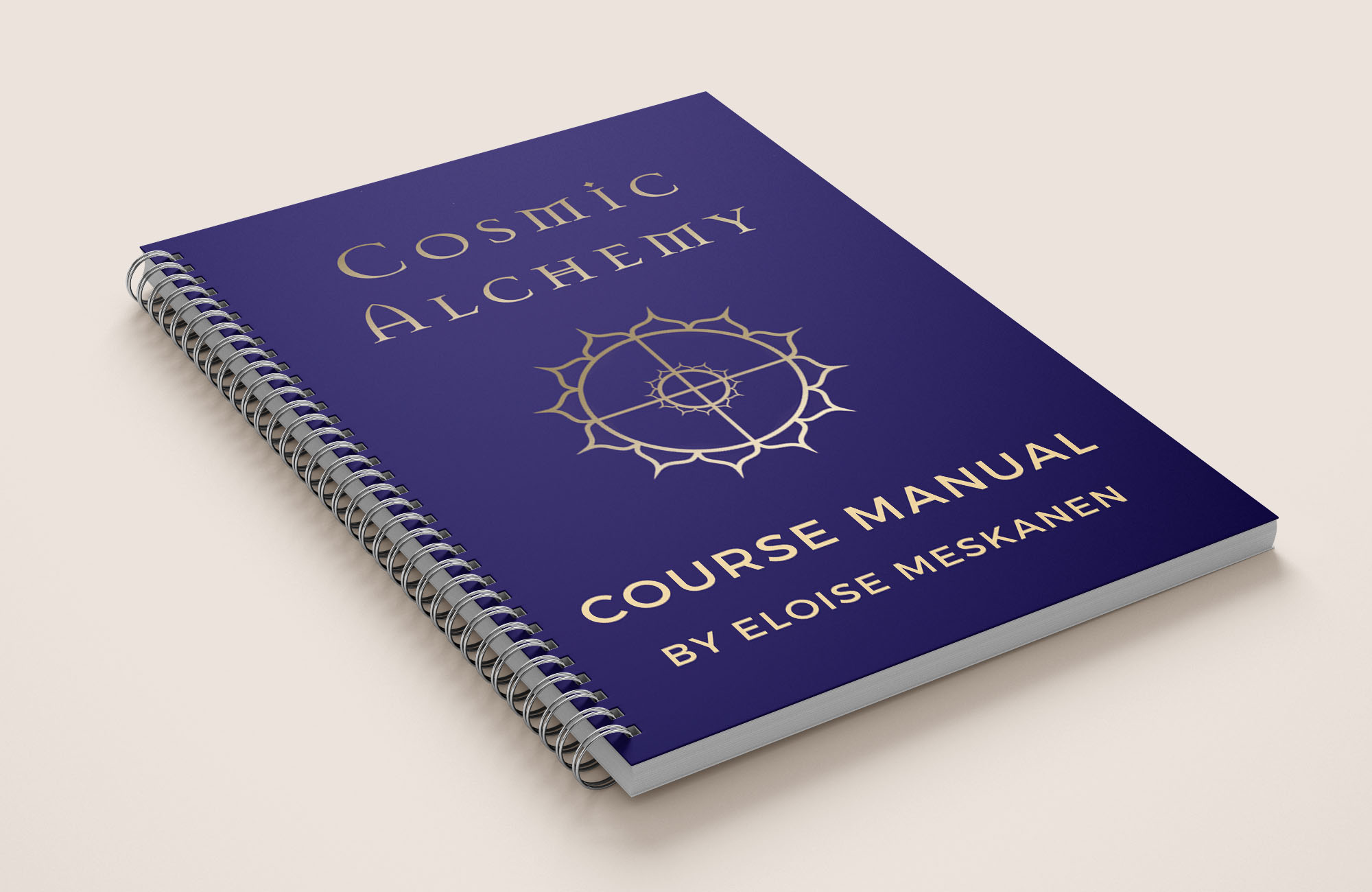 PROFESSIONALLY PRINTED AND BOUND WORKBOOK  - A handy journal and workbook to record your insights