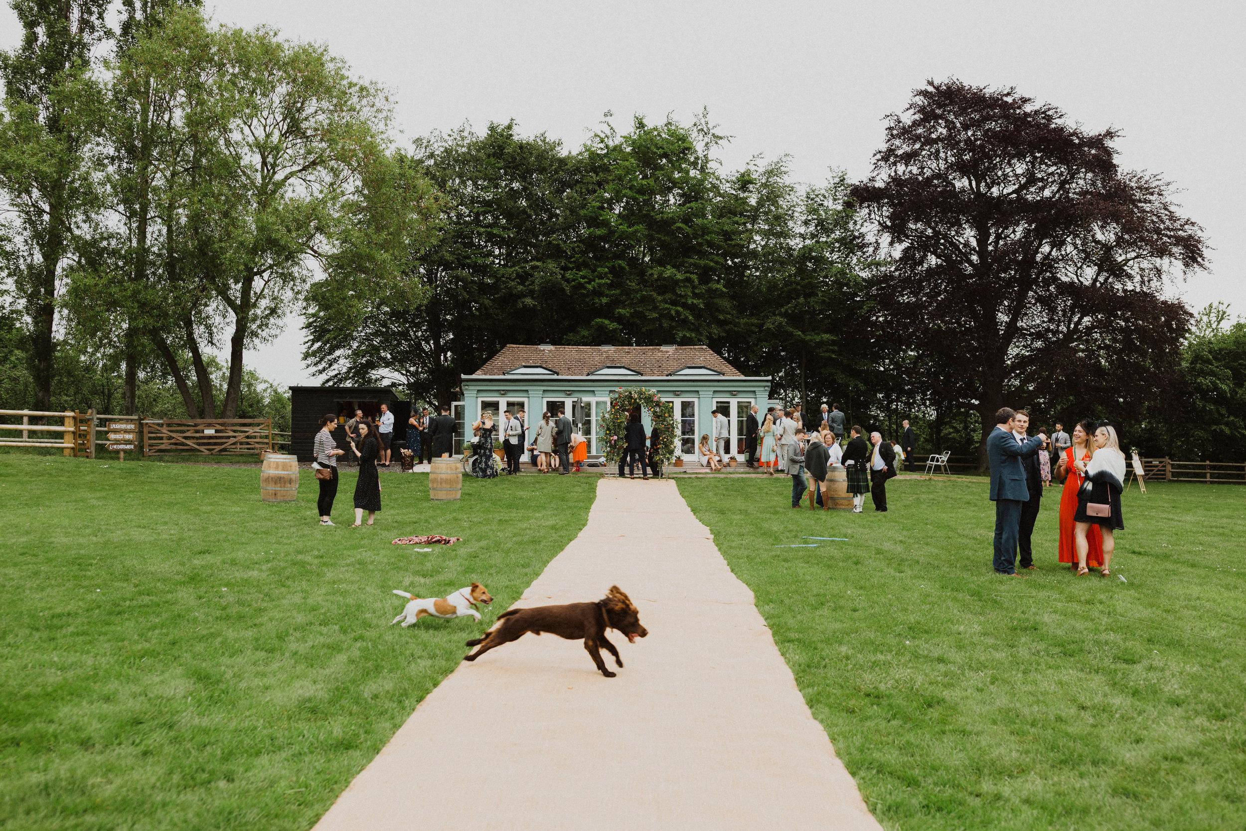 Hawarden Castle Pavillion Wedding -362.jpg