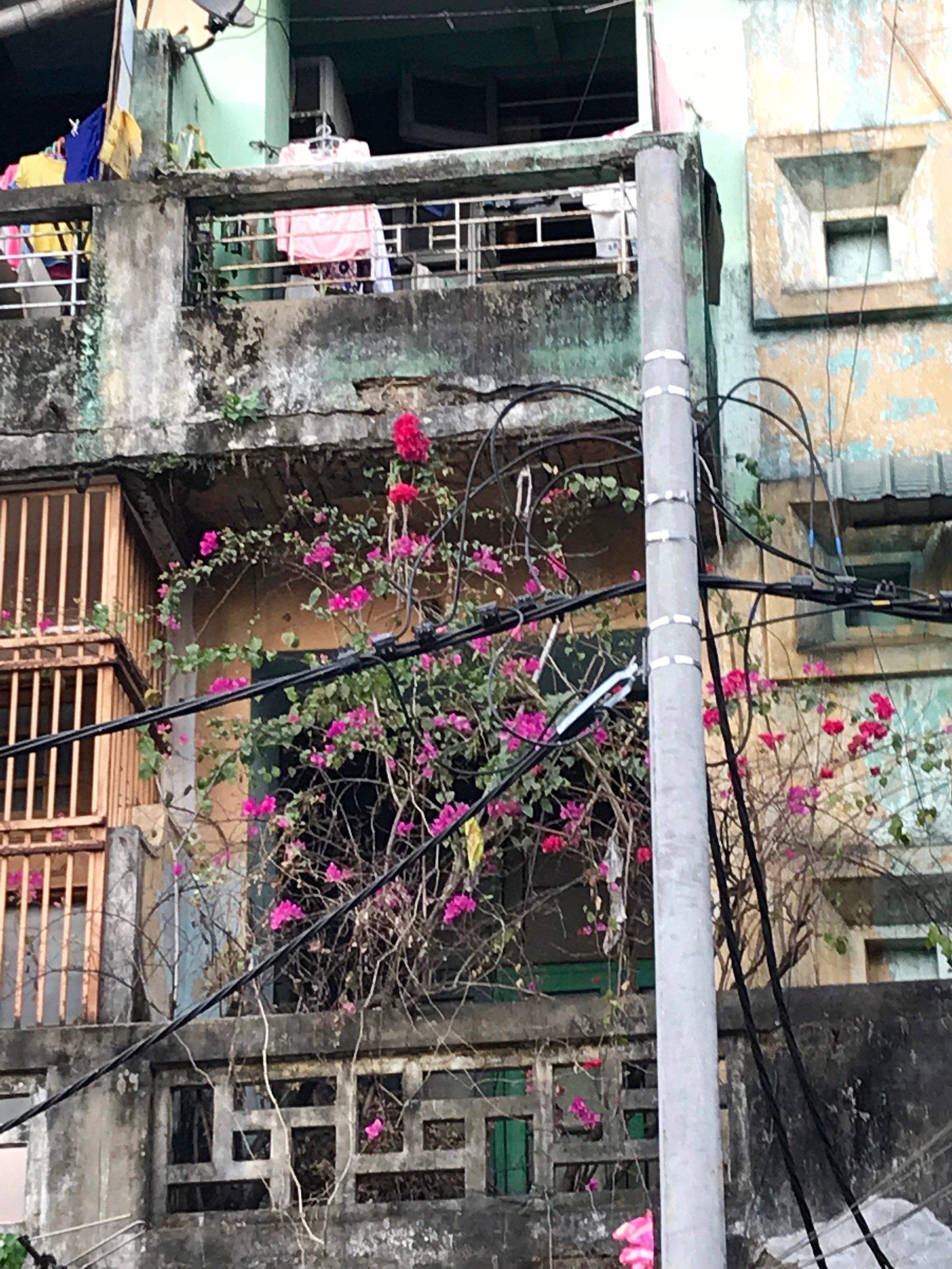 A Rangoon window