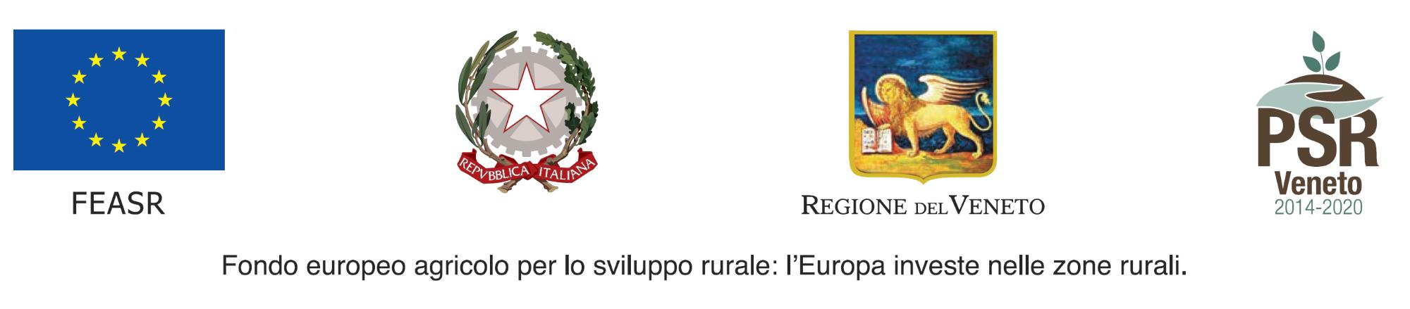 FONDO EUROPEO.png