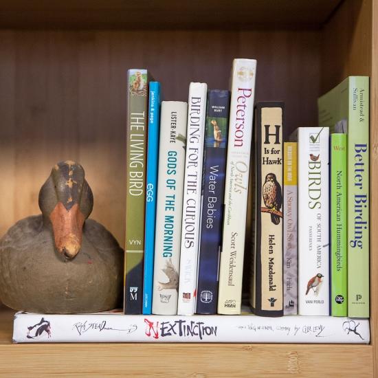 National Audubon 12 Best Birding Books.jpg