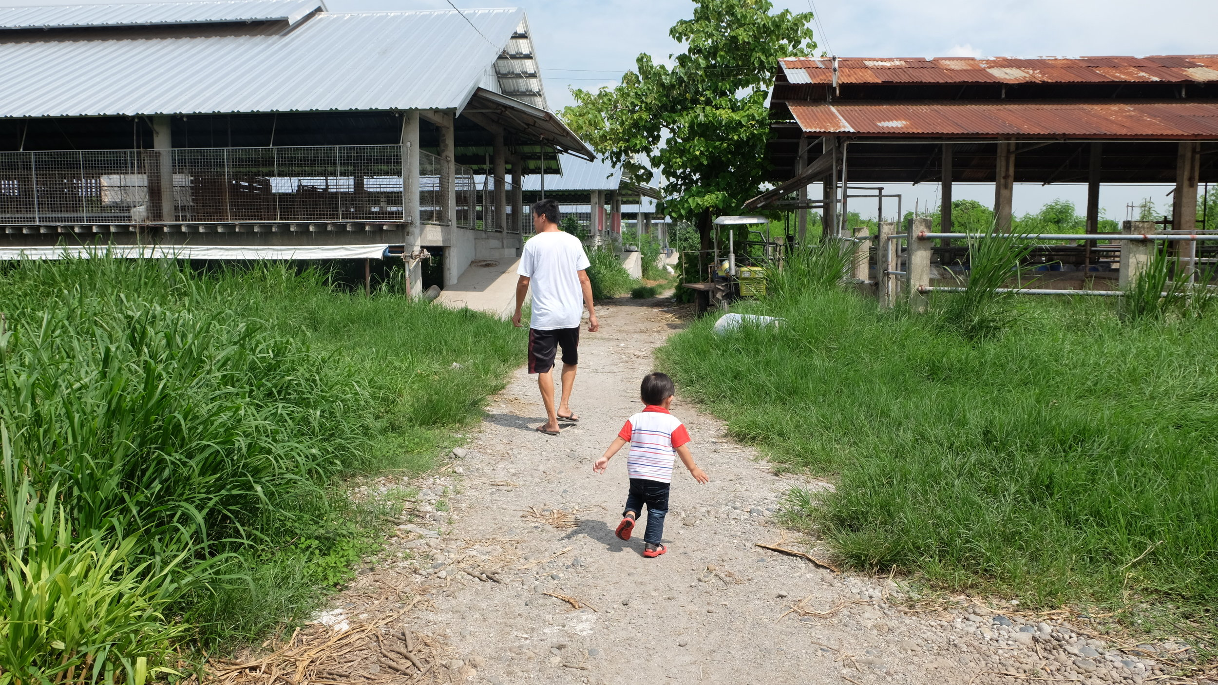 Our little boy exploring with  kuya !