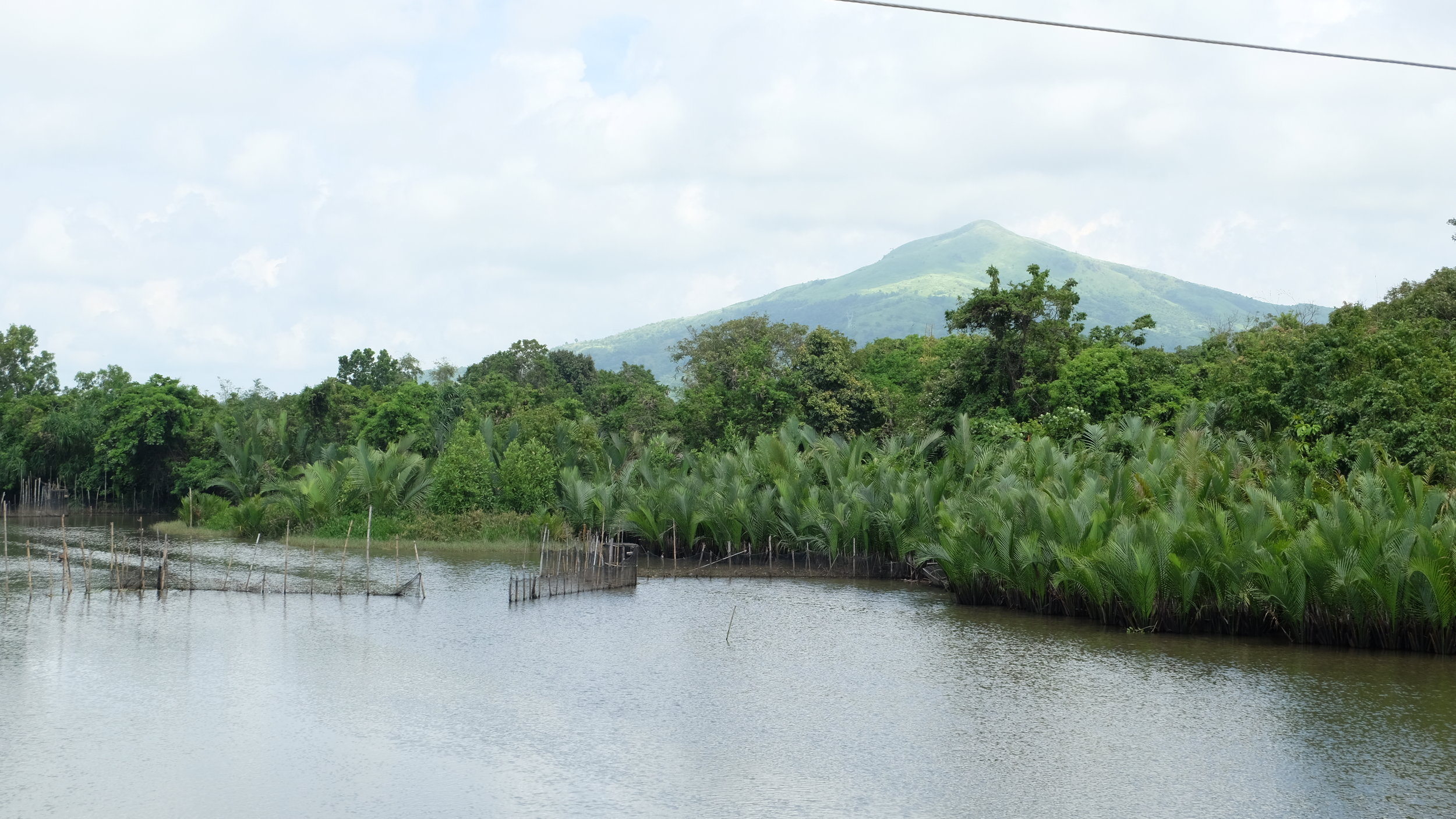 The River - There were fishing nets, and life thriving in here!