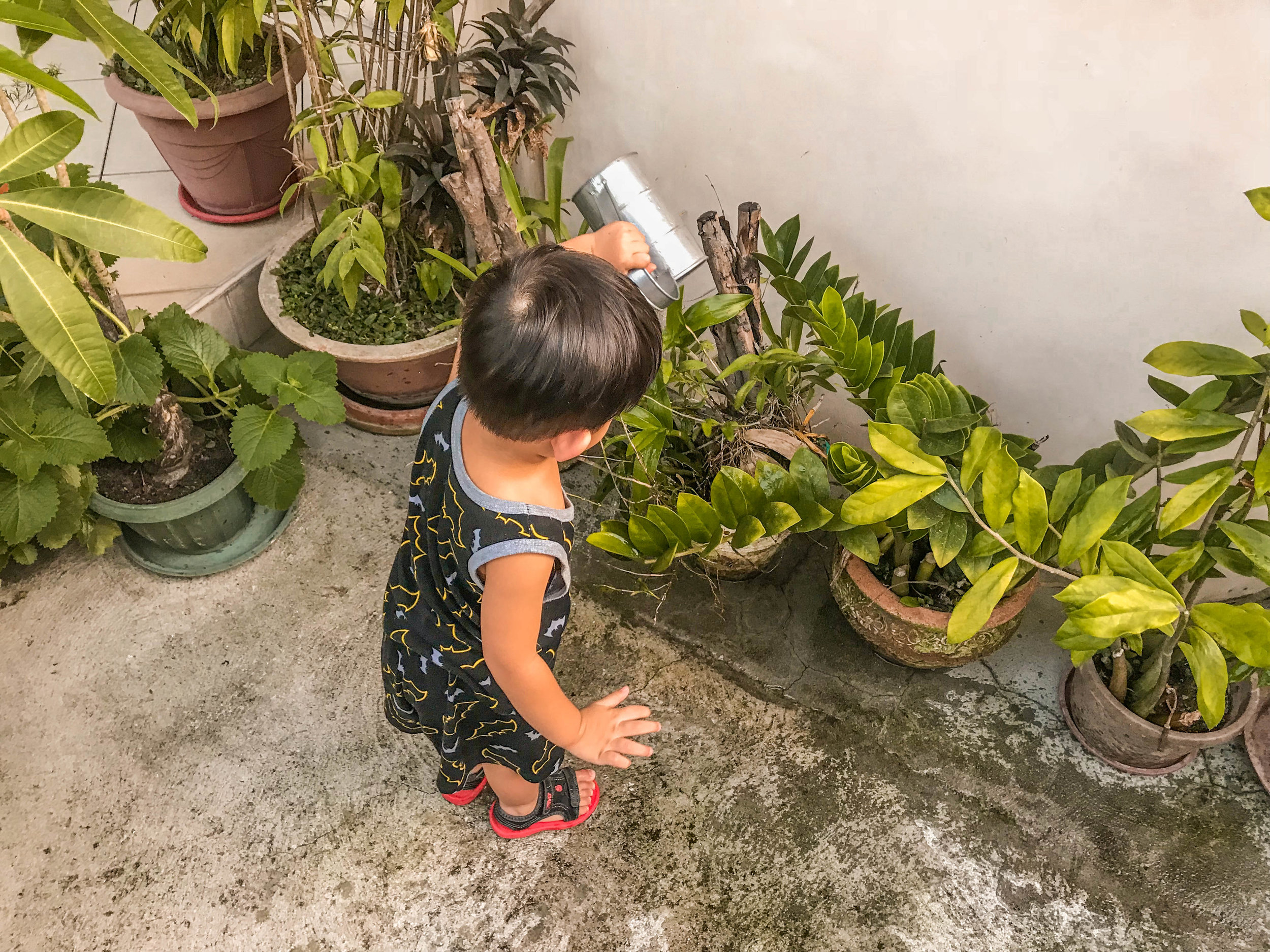 Our Little Gardener - Apart from us all aiming to have a green thumb, we want to do things that would attract the dream life outside this 'toxic' city — which entails having lush lush lush gardens with crops, veggies, orchids and whatever life our earth (and soil) can sustain.