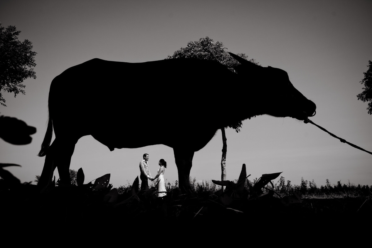 Best-Vietnam-wedding-photography-108.jpg