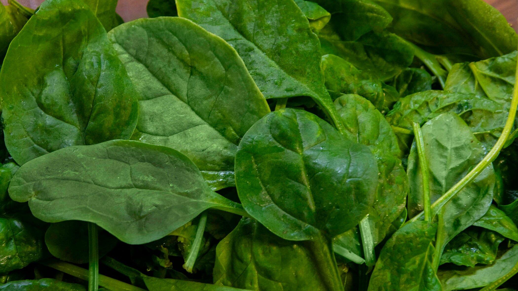 Spinach -