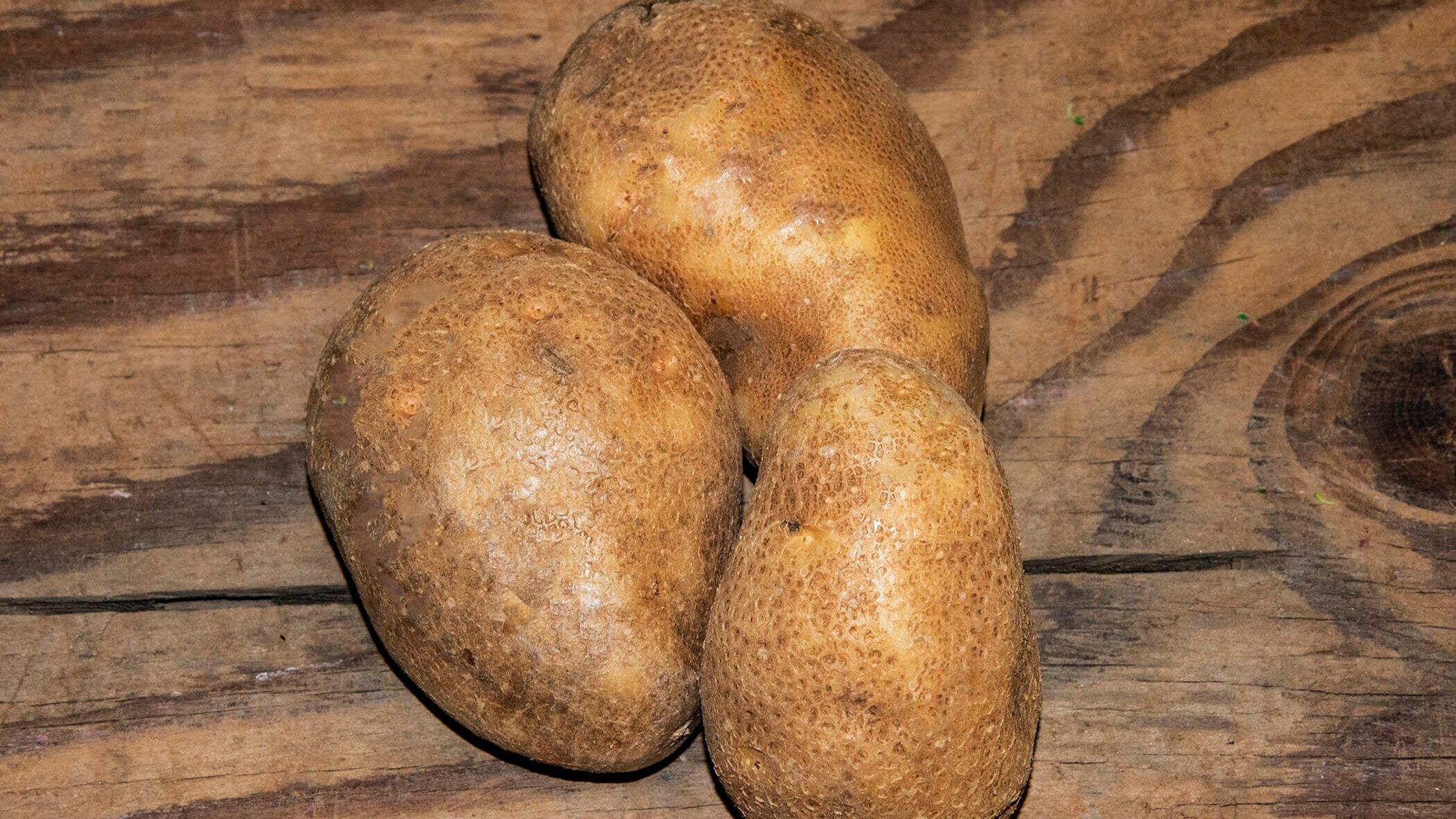 russet potatoes -