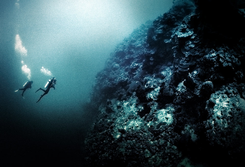 6000 feet drop off at Bloody Bay Wall, Little Cayman