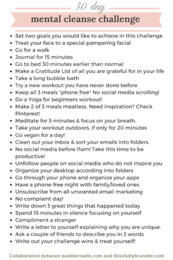 30-Day-Mental-Cleanse-Challenge-683x1024 (1).png