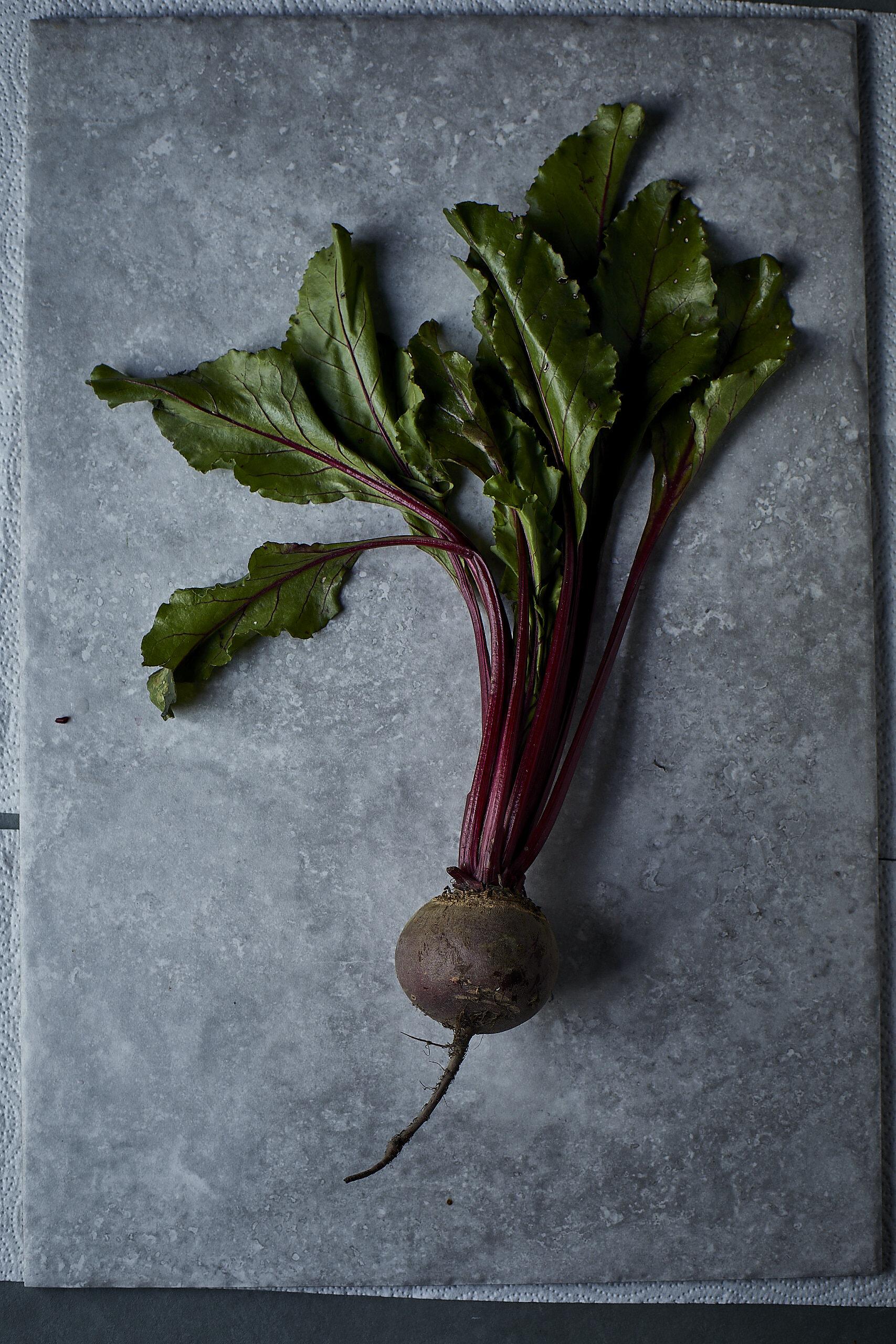 03.04.19_More_Plants119_Beetroot.jpg