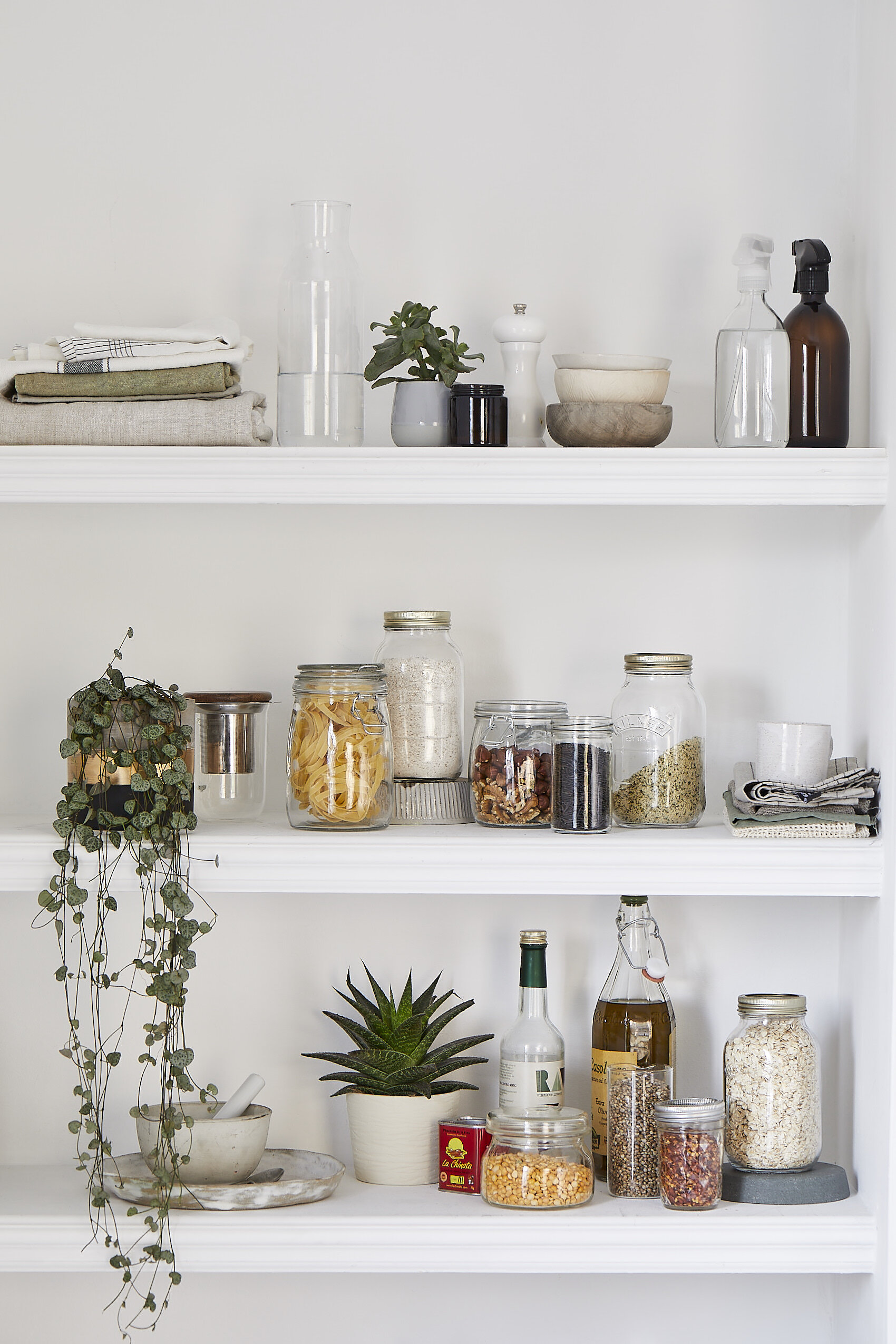 04.04.19_More_Plants_016_shelves.jpg