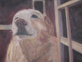 Dogs - See Paintings