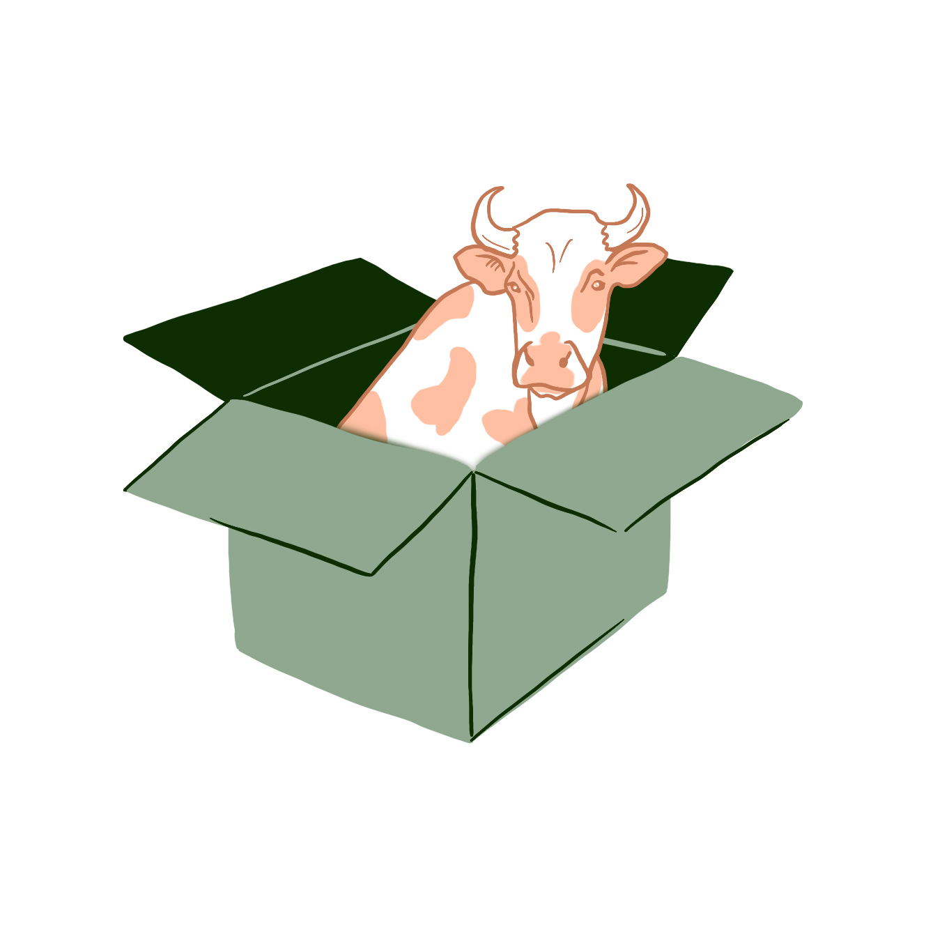 points-of-measure-resources-butcher-box.jpg