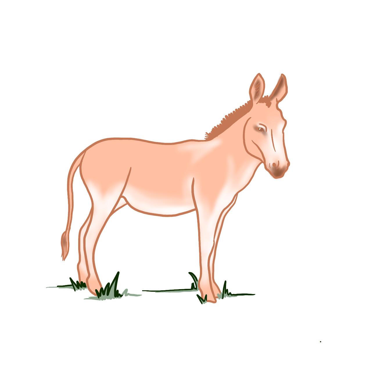 points-of-measure-resources-sticker-mule.jpg