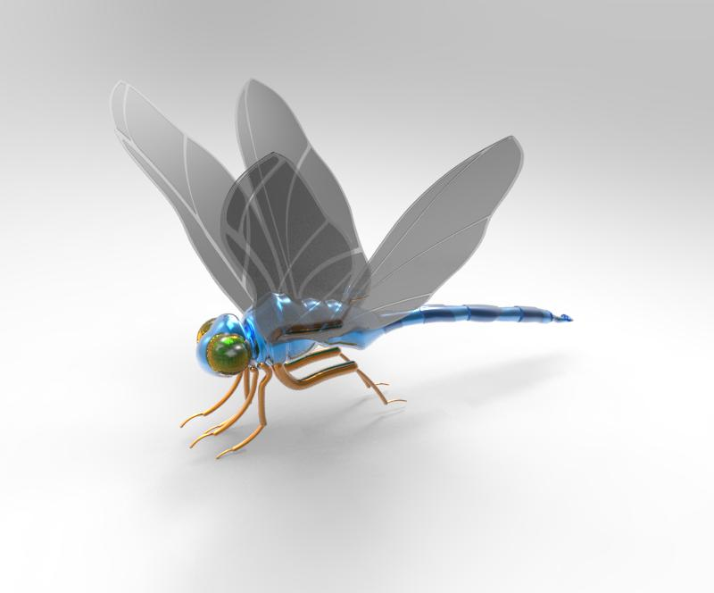 Dragonfly - Side View