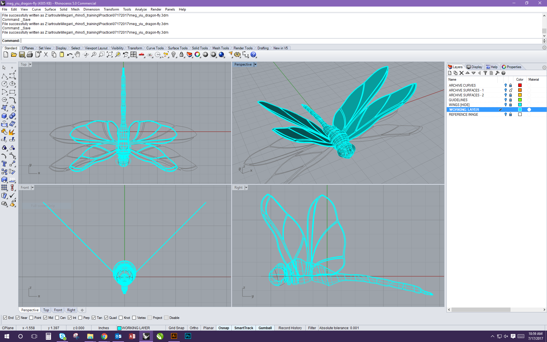 Dragonfly Wireframes