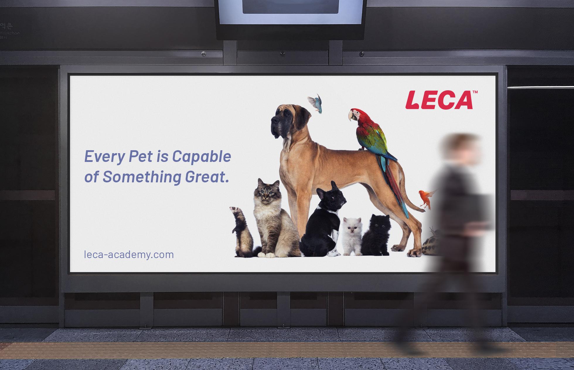 dog-academy-ad-logo-brand-identity.jpg