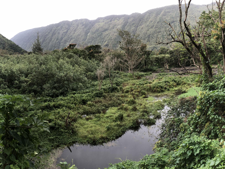 waipio-valley-big.jpg