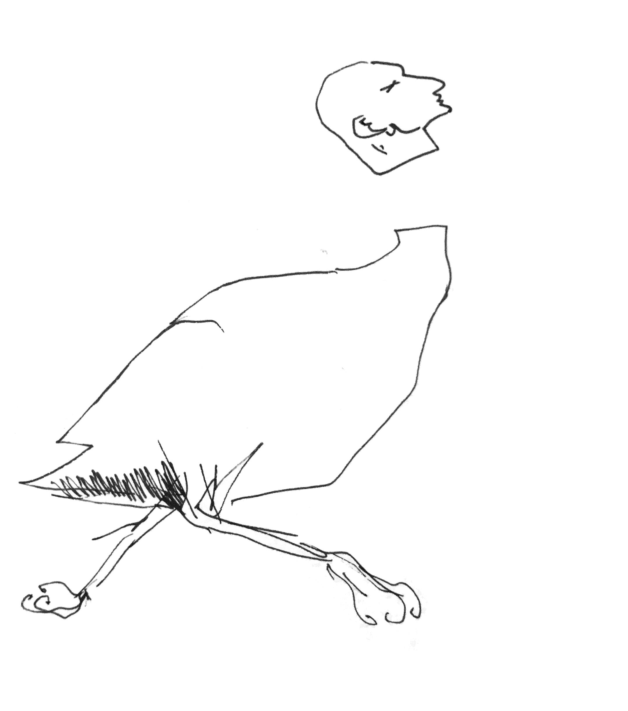 chicken_ss1.jpg