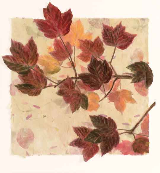 Autumn Leaves 16x40