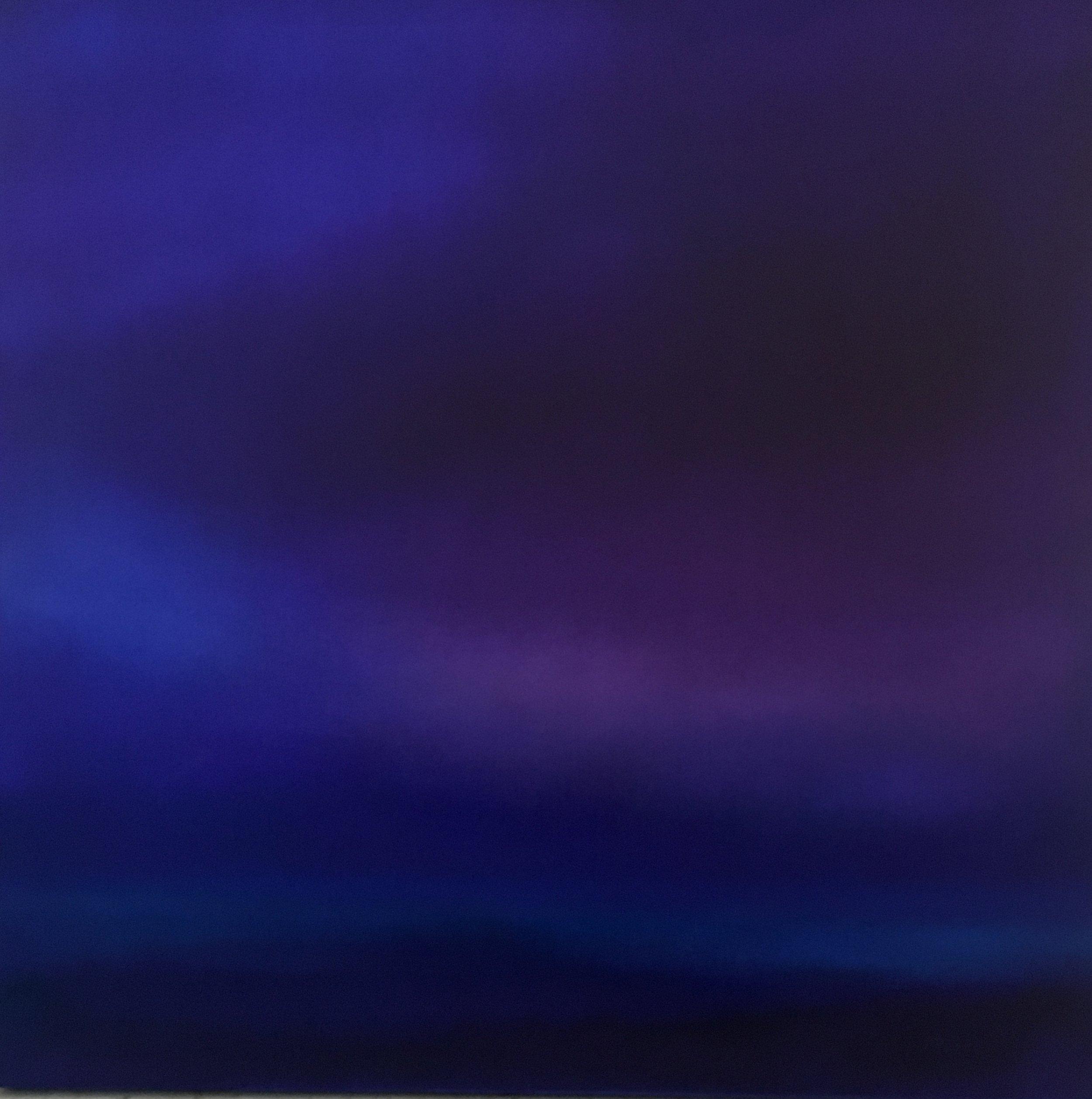 PurpleRain2 angelapierro.jpg