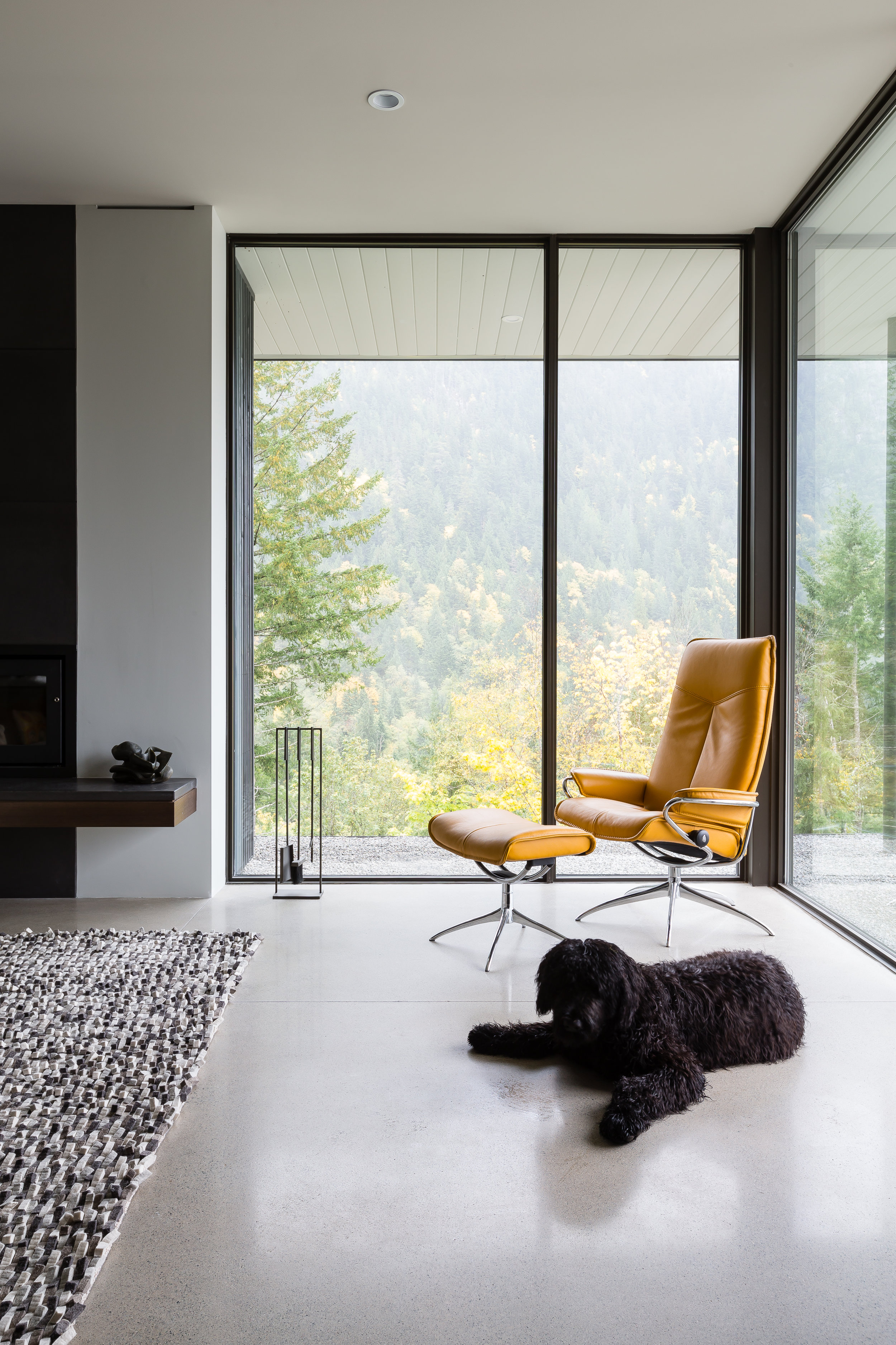 A dog sitting in front of the fireplace and floor to ceiling windows in a home designed by interior design and architectural firm Openspace Architecture based in North Vancouver British Columbia