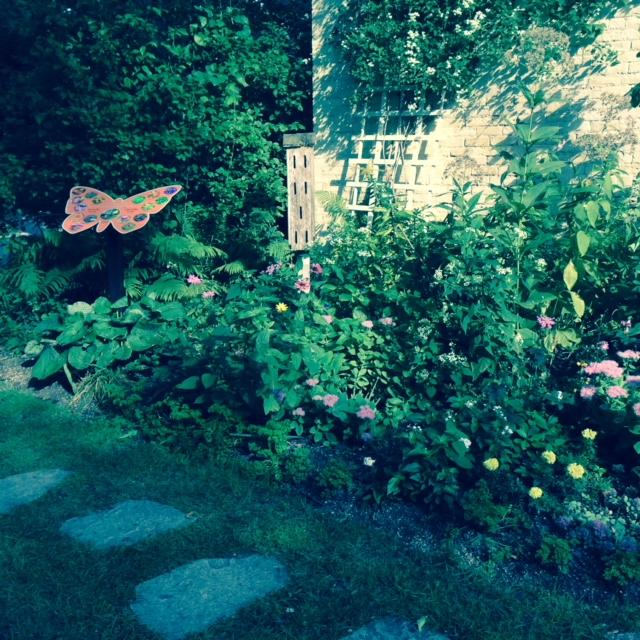 butterfly.6.jpg
