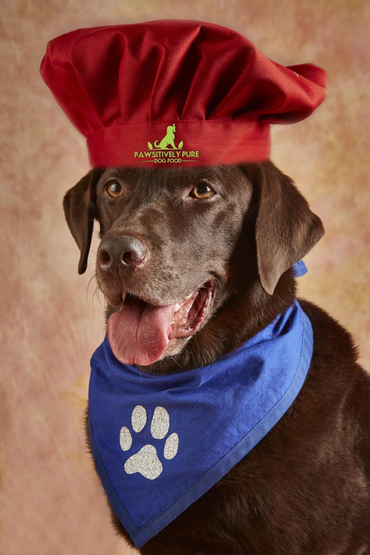 logo Jackson Chef Hat.jpg