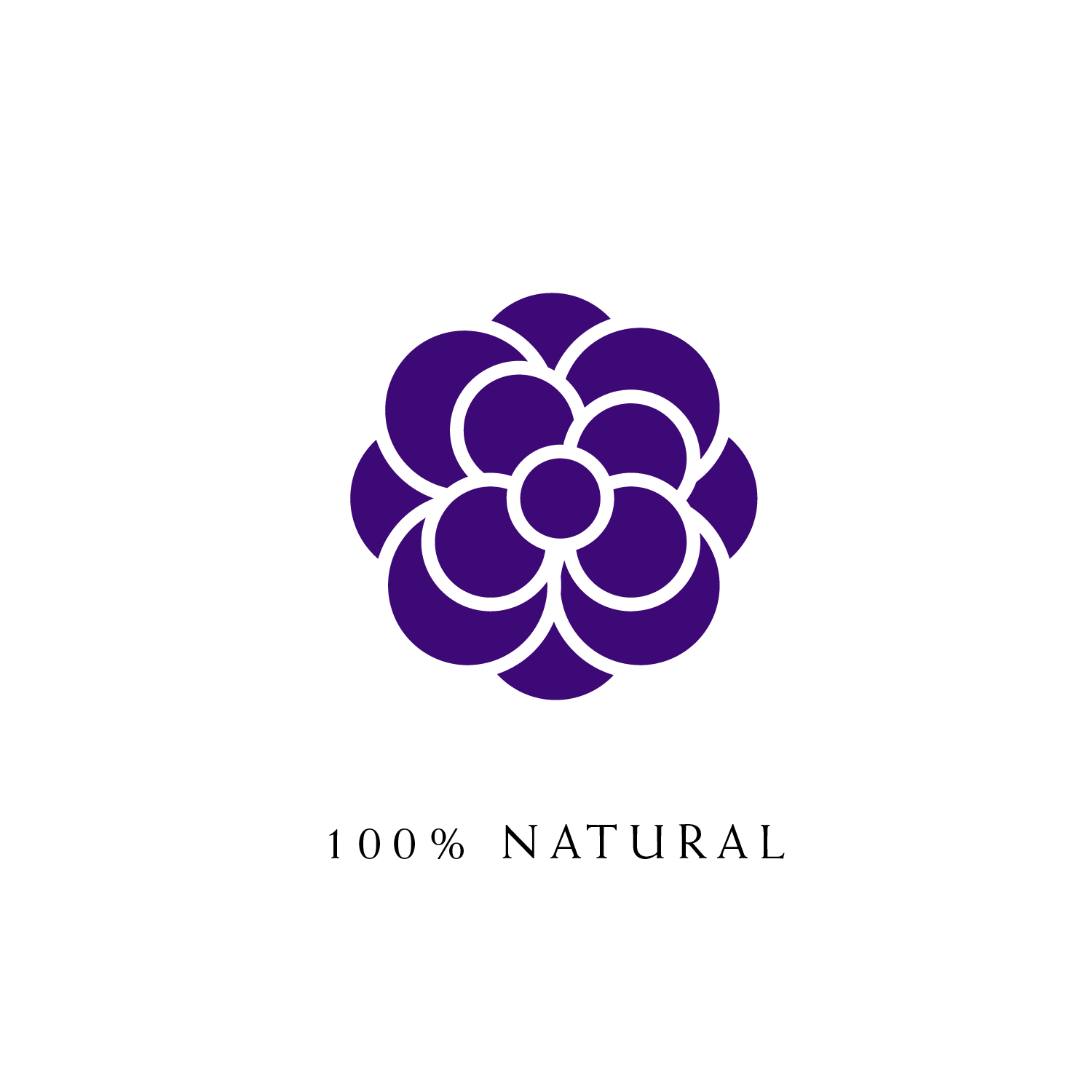 KPO-icons-Purple-100Natural.png