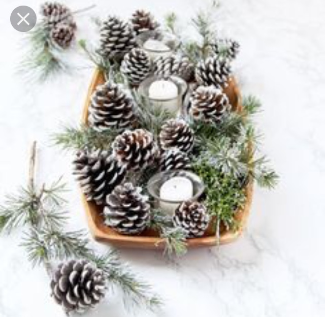 pinecone and pine branch basket DIY the wealth babe.jpg